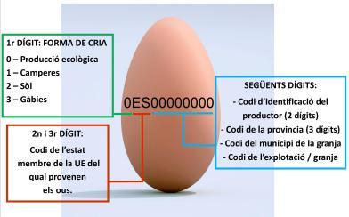 codis-ous-gallina1